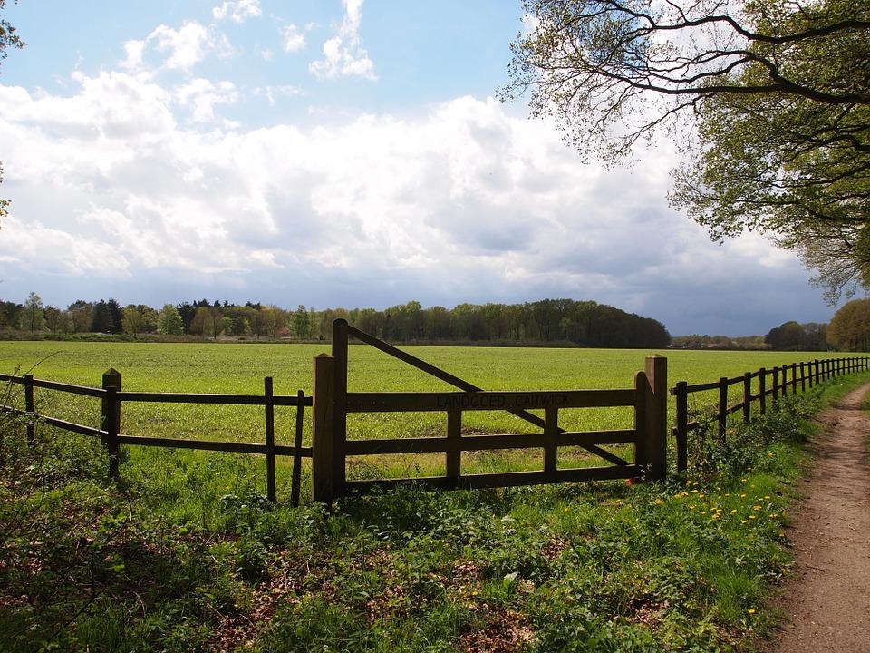 Verkiezingen Zuid-Holland bieden kans voor slimme investeringsregeling natuur en landschap