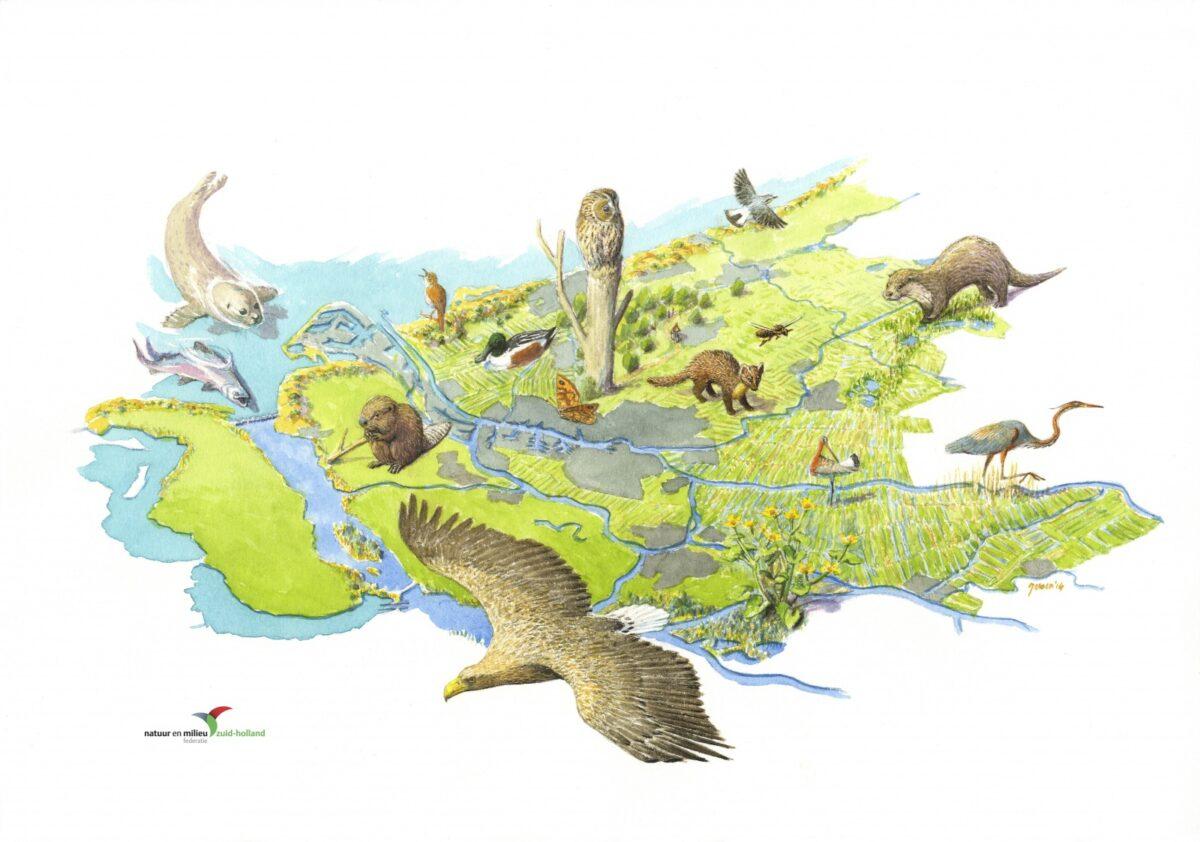 Ondersteun het Natuurmanifest: teken de petitie!