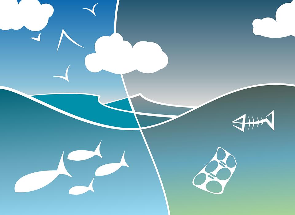 Meer aandacht voor natuur en leefomgeving nodig in waterbeheerprogramma Rivierenland