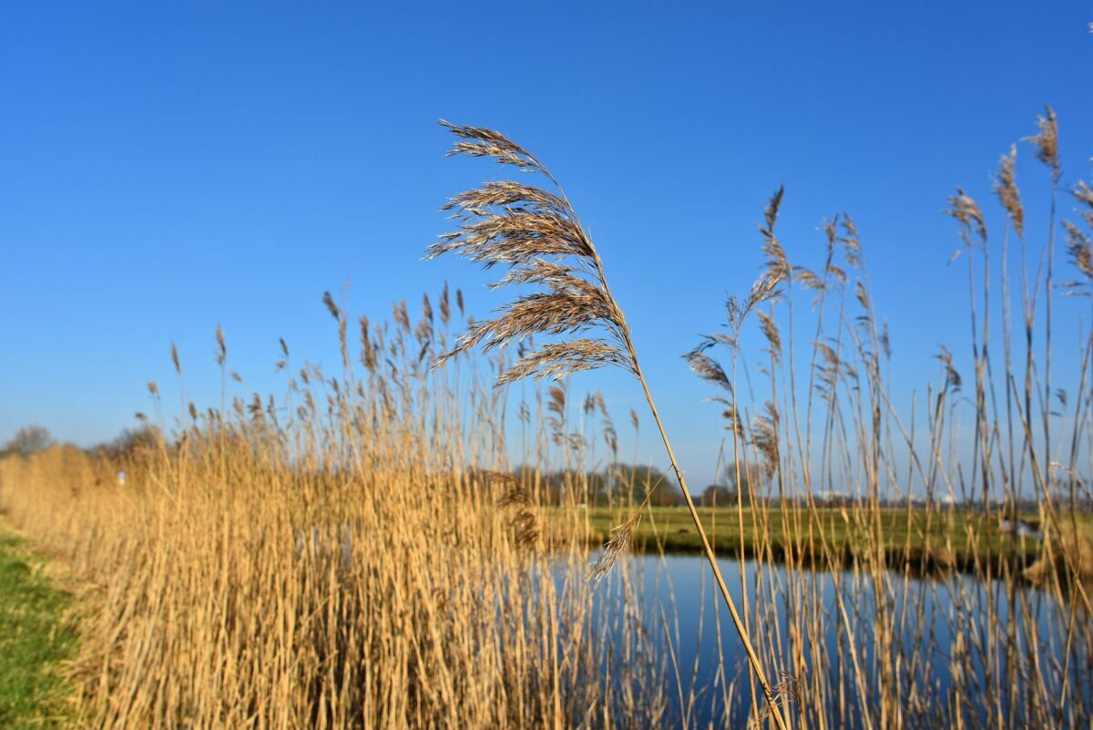 De Europese waterwet blijft!