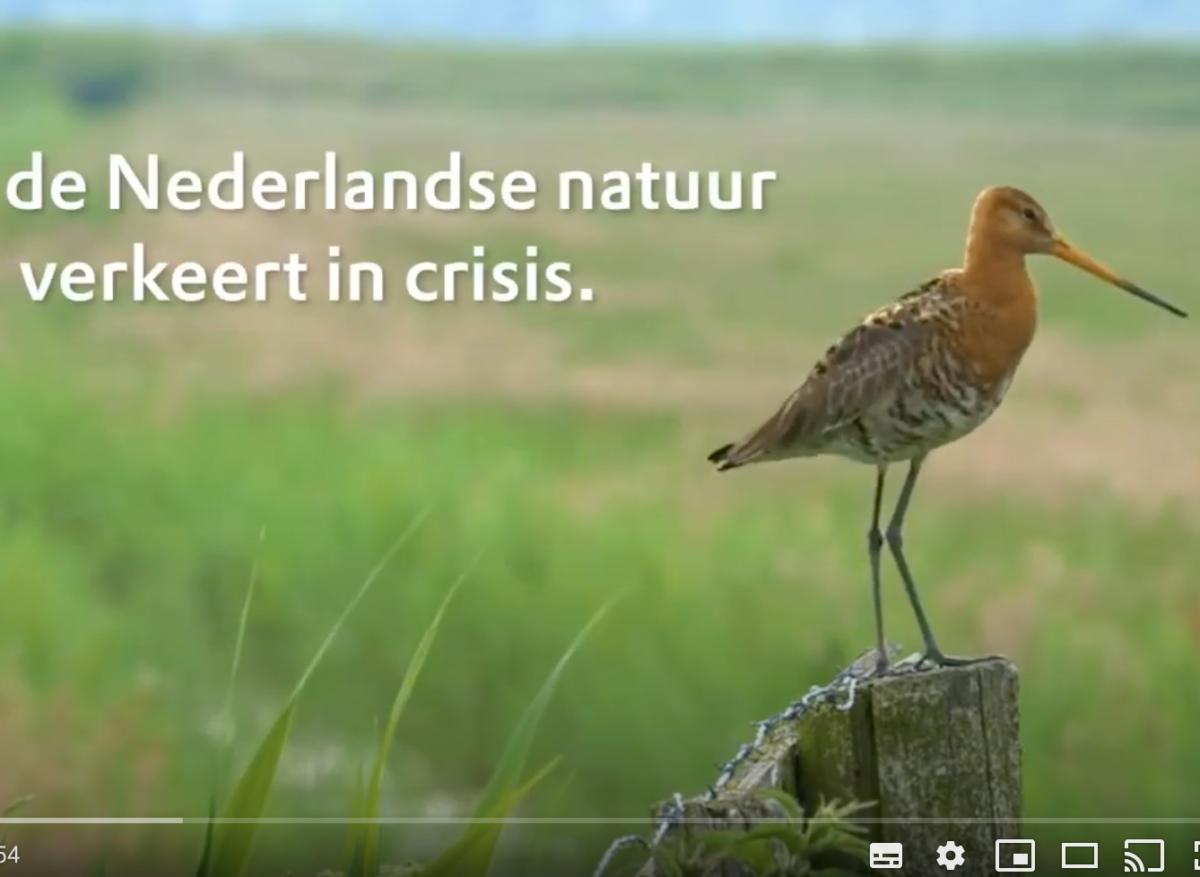 Grote zorgen om natuur in Zuid-Holland