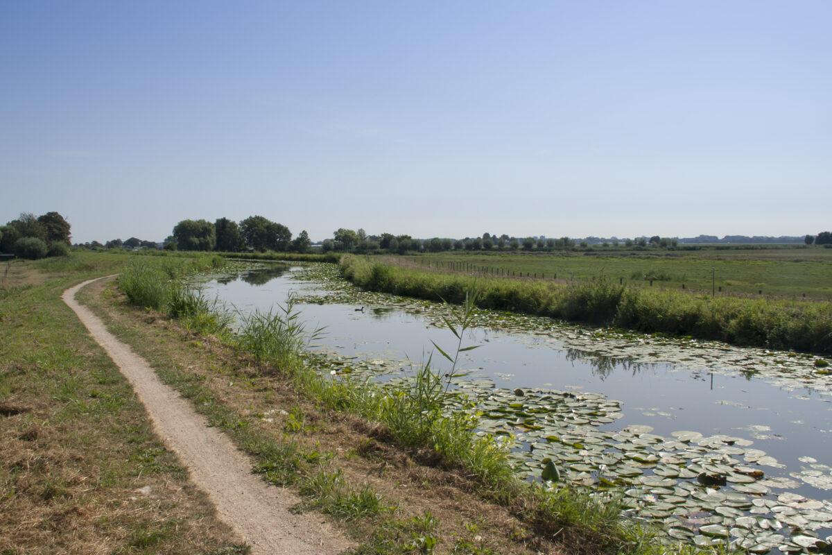 Zienswijze Zuid-Hollandse Omgevingsverordening