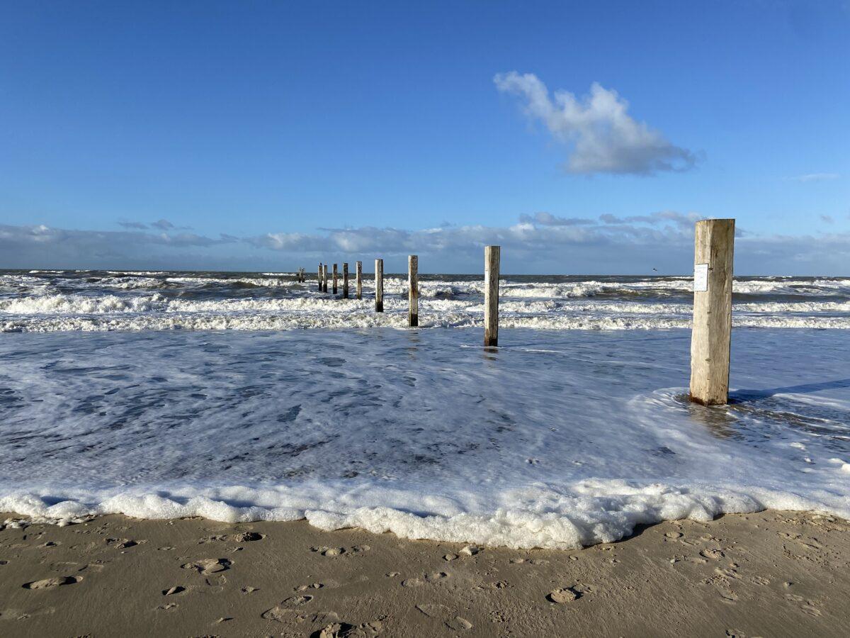 Uit onderzoek blijkt dat de Noordzee schoner wordt